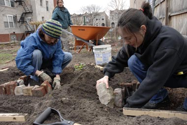 Woodlawn needs its community gardens as much as the new condos