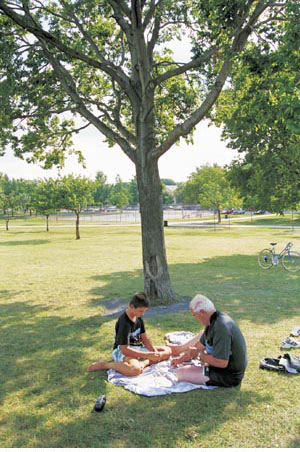 Old benefits bring new residents, homes to Irving Park